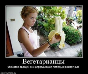 944771_vegetariantsyi