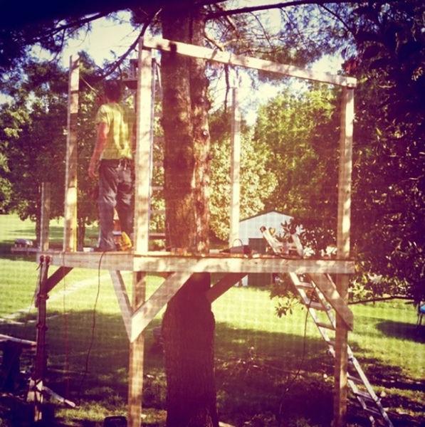 a_house_built_around_a_tree_640_04