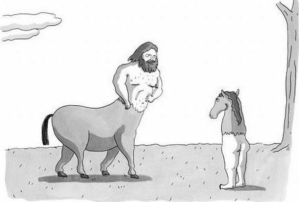 Лошадь с человеческими ногами