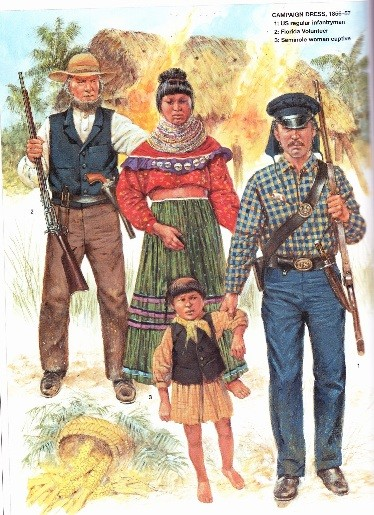 an analysis of the experience of the seminole indians on the hands of american soldiers