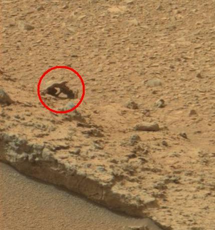 mars rover creature-#16