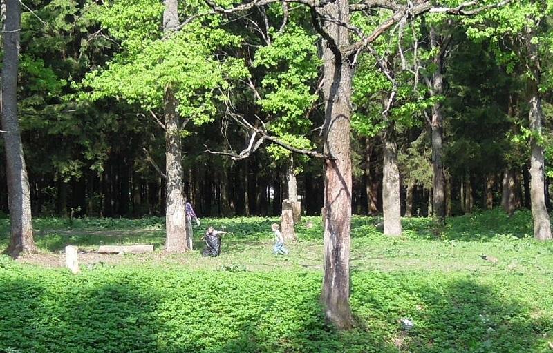 Троицкий лес (2)
