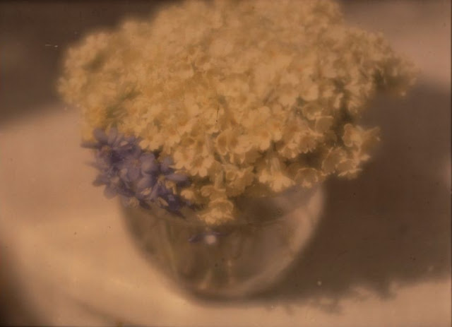 hkFlowers in a Bowlca. 1908–10