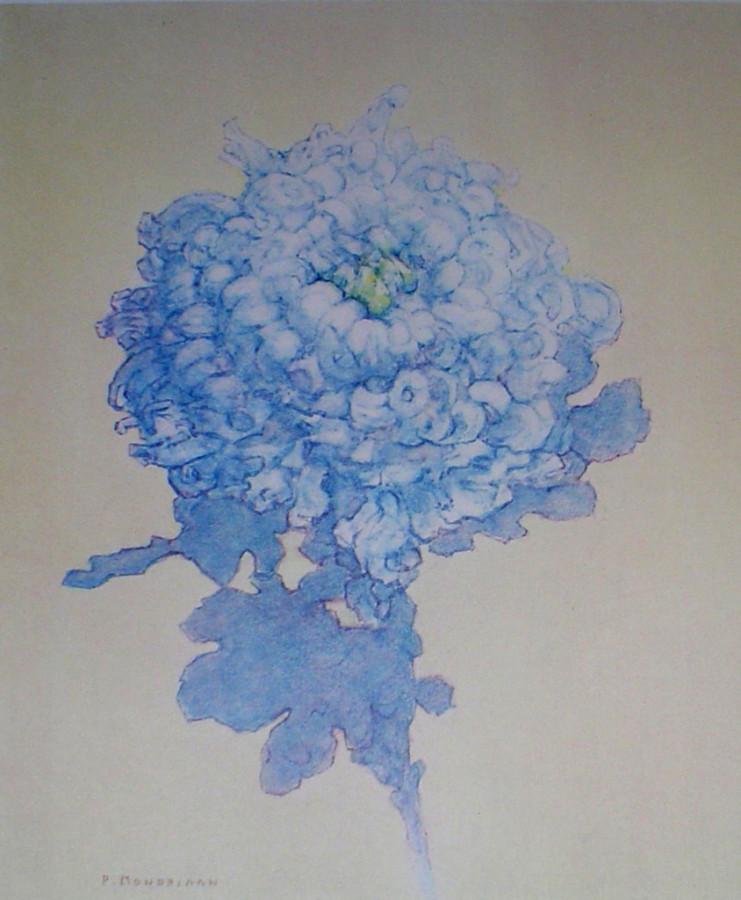 mp049cv-piet-mondrian_blue-chrysanthemum