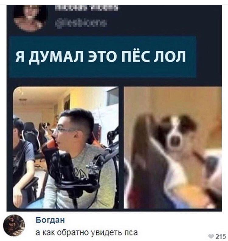 Мальчик в наушниках vs. Пёс