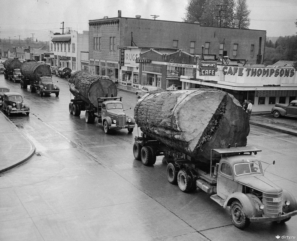 Грузовики с брёвнами в Норт-Бенд, округ Кинг, штат Вашингтон, 1943 год