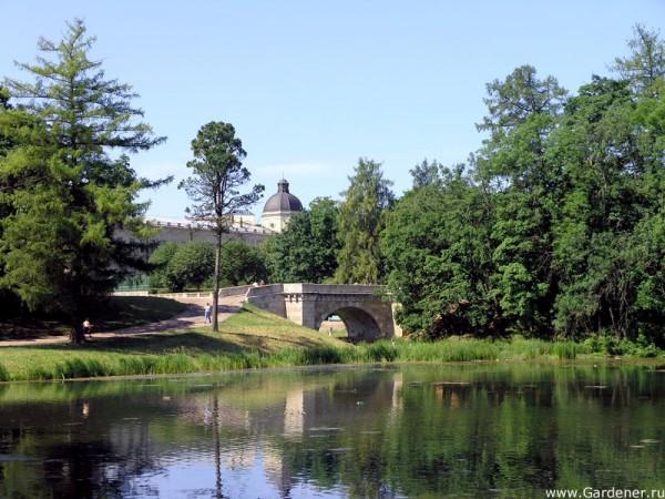 гатчинский парк праздник