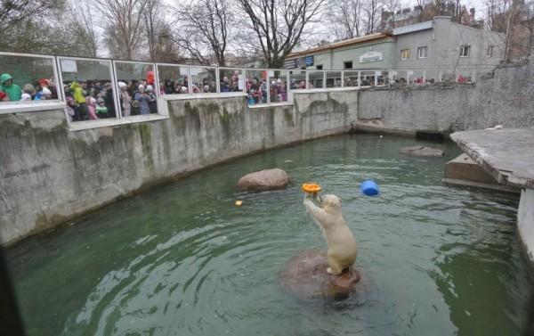 зоопарку 150 2015