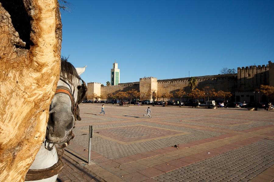 Фототур школы «Юниверс» в Марокко 2104