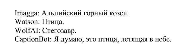 it19q02R.jpg