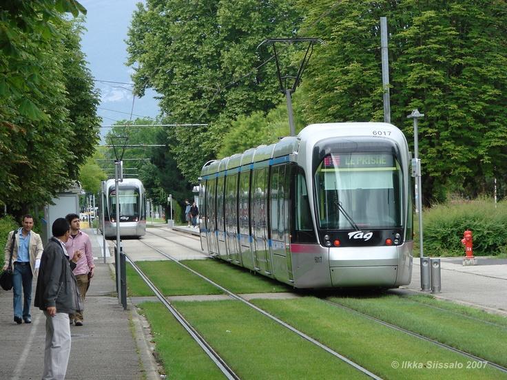 трамвай-газон