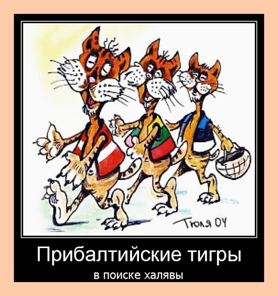 прибалтийские тигры