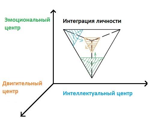 эмоциональном центре, интеллектуальном, сексуальном, инстинктивном и двигательном