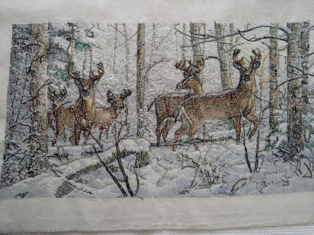 оленей в зимнем лесу.