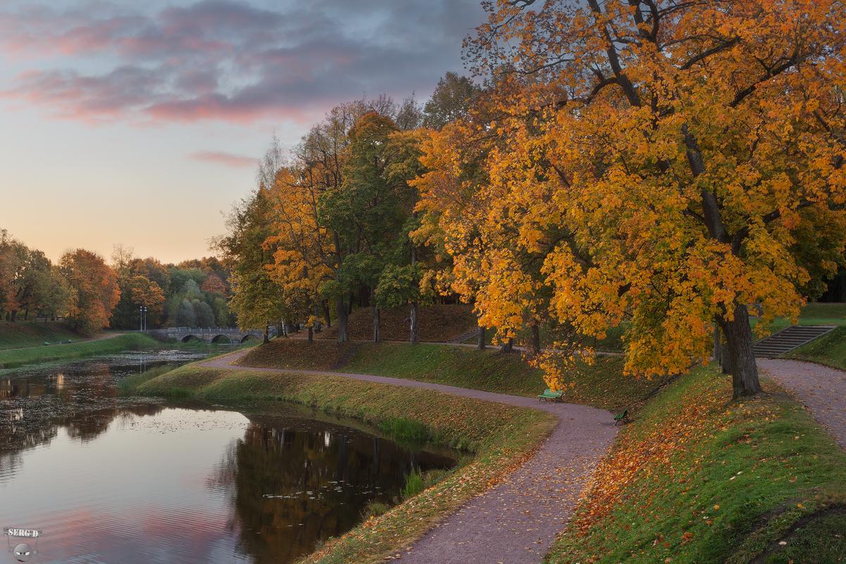 Осень картинки гатчина