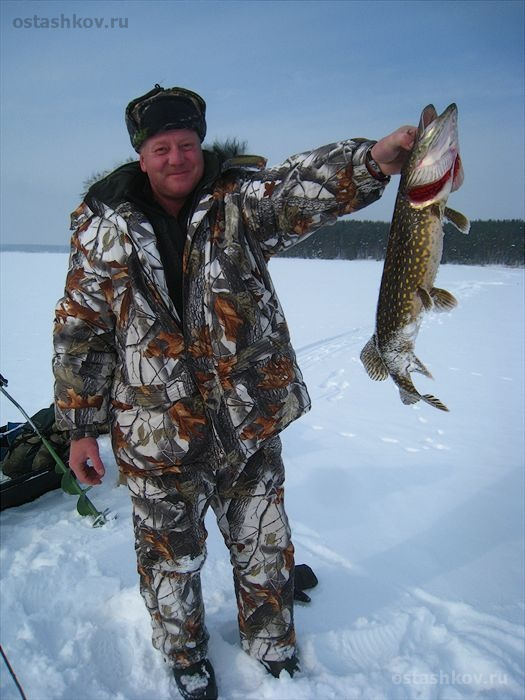 рыбалка на щуку на селигере