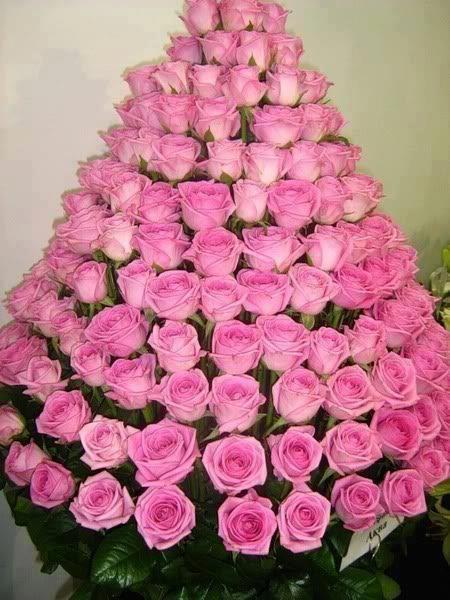 309462_2298916170050_1849455732_n  Пирамида из роз
