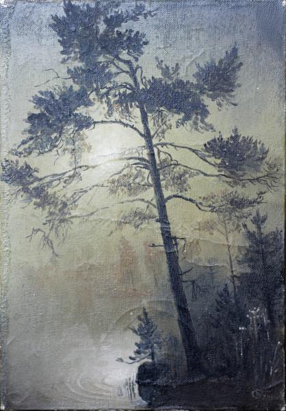 Н.С. Баталов