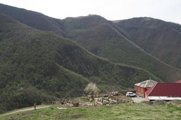 Чечня, хутора в ущелье Тазбичи
