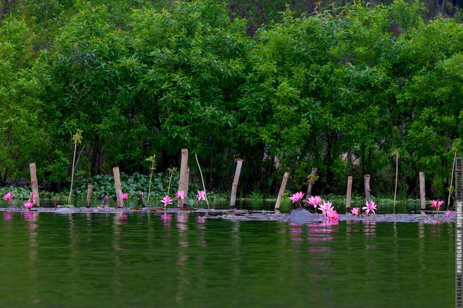 20121230_VIETNAM_007