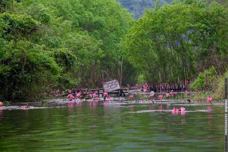 20121230_VIETNAM_011