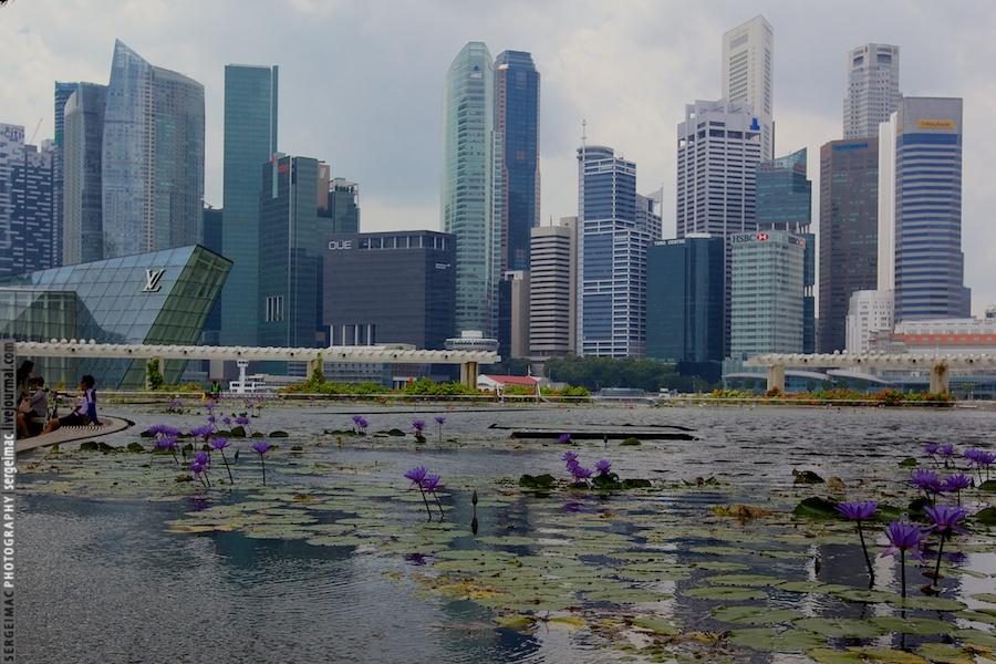 20130108_SINGAPORE_011