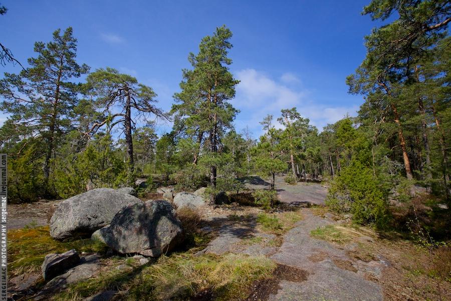 20130515_FINLAND_1689