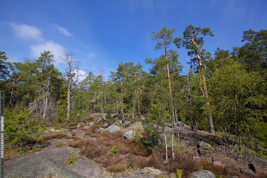 20130515_FINLAND_1695