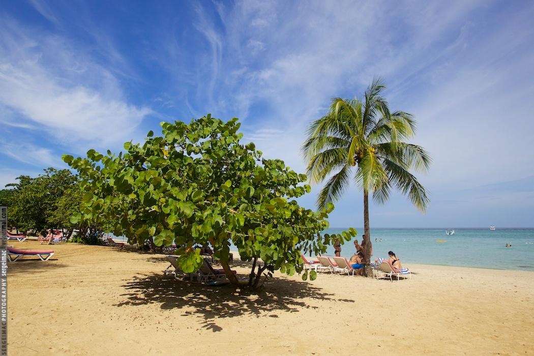 20130831_JAMAICA_036