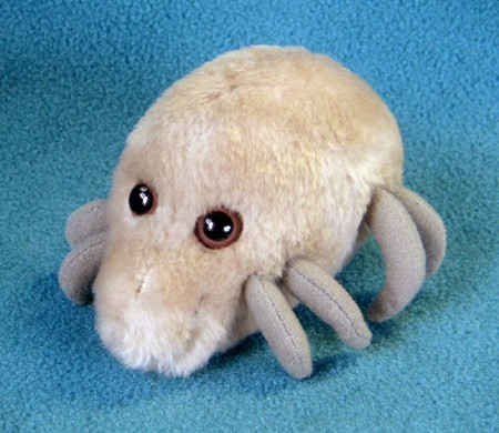dust-mite-stuffed-f1561