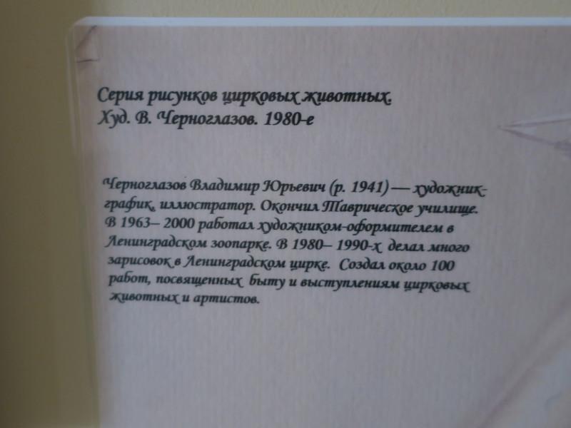 IMG_8501