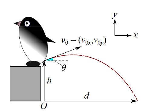 penguin_F