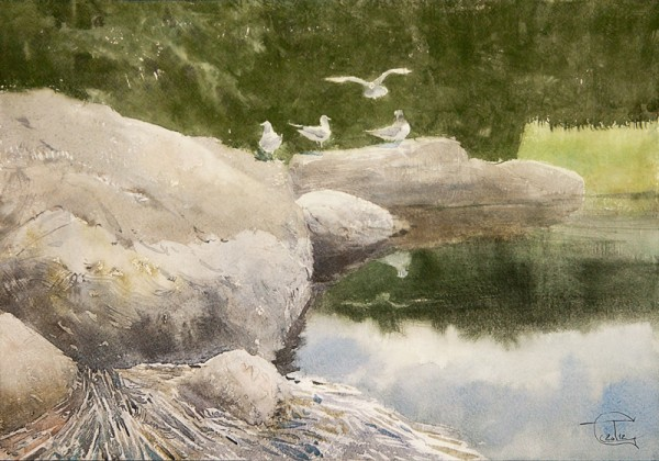 On the coastal rocks-II