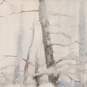 Trees in the snow-haze