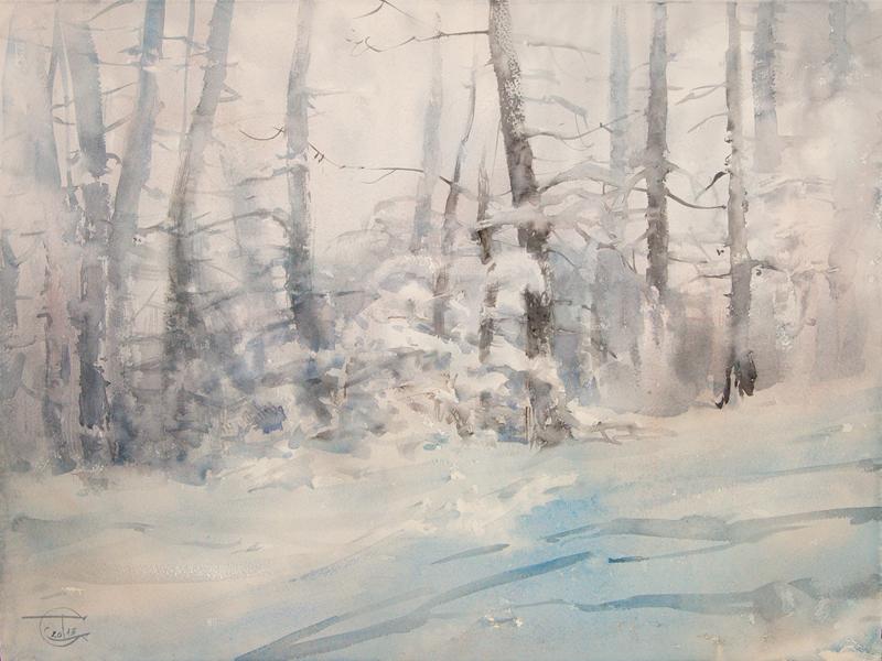 Trees in the snow-haze