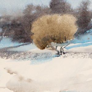 Snow thaws