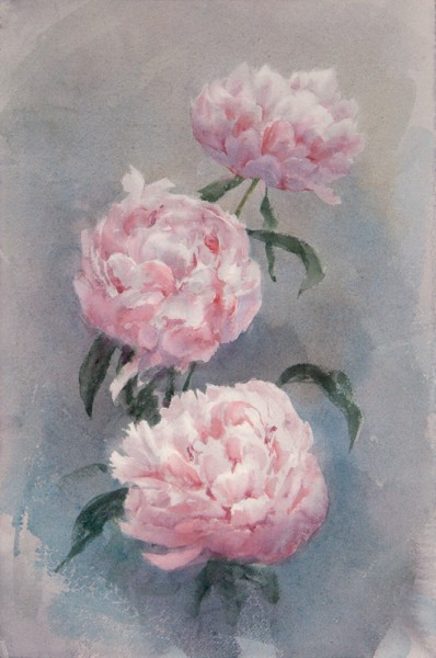 Disclosed peony flowers