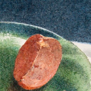 Persimmon on the green glass plate