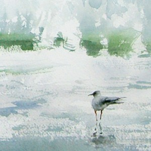 Seascape with Seagull