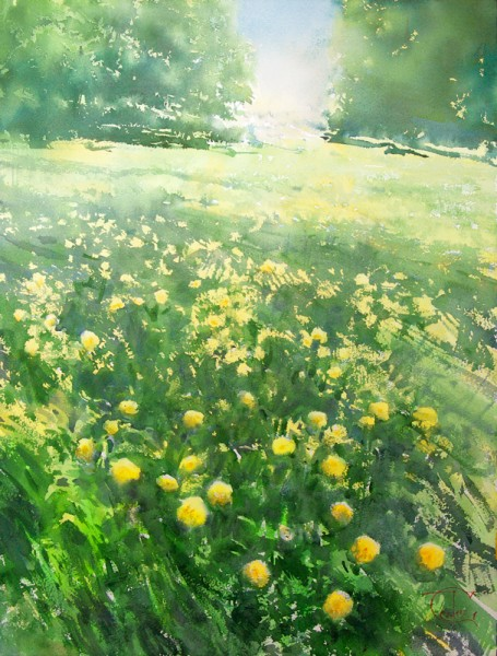 May, the time of blooming dandelions