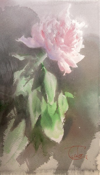 Pink Peony and the shadow