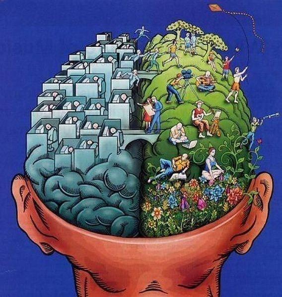 brainRecycle