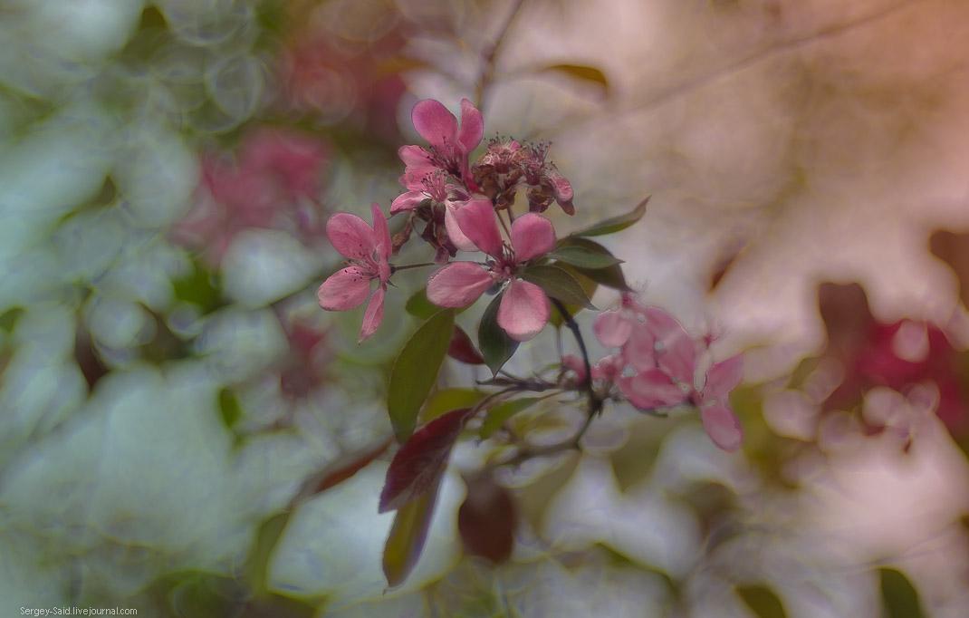Конец весны - начало лета