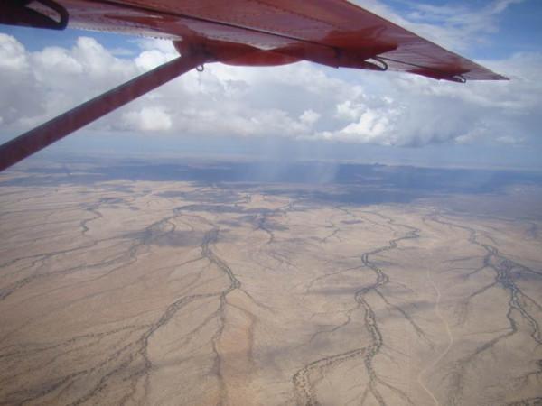Сухие русла пустыни