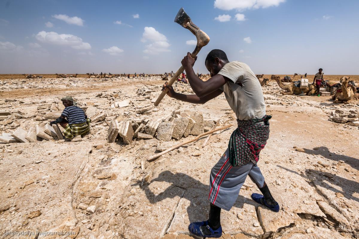 За что платят 200 рублей в день в Эфиопии