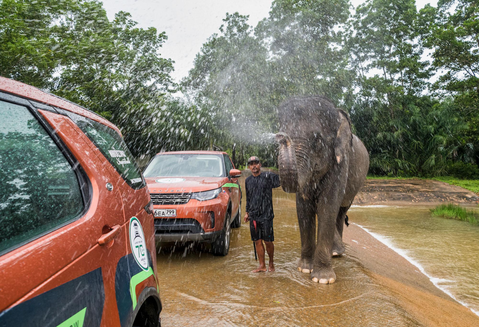 Слон помыл автомобили. Таиланд.