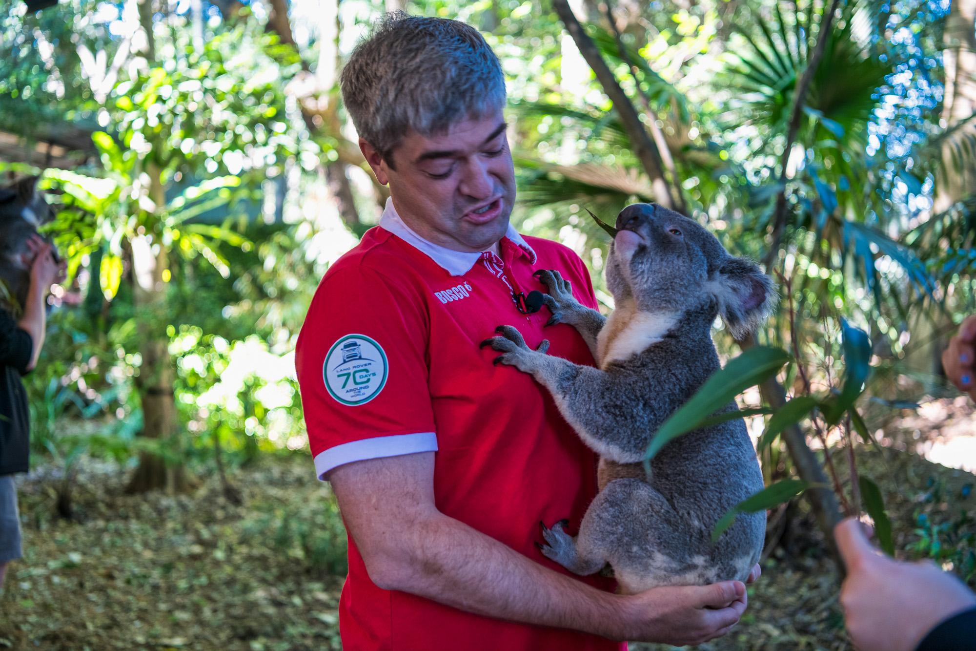 Селфи с кенгуру кенгуру, Сегодня, видео, футбольных, надоедает, внимание, людей, могут, специальное, ограждение, имеют, права, заходить, вышла, очередная, серия, которой, кругосветку, загоне, пробую