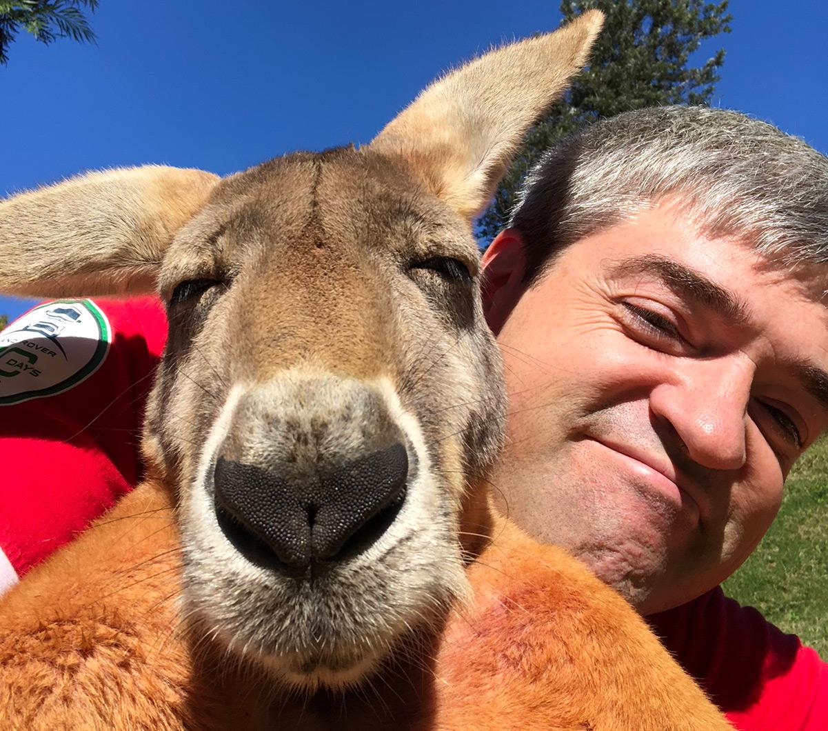 Селфи с кенгуру