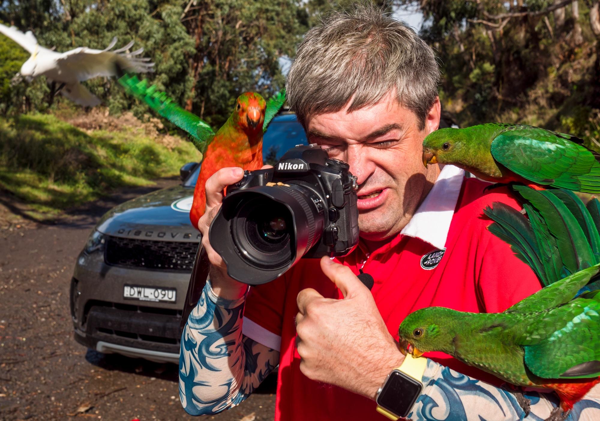 Меня атаковали попугаи