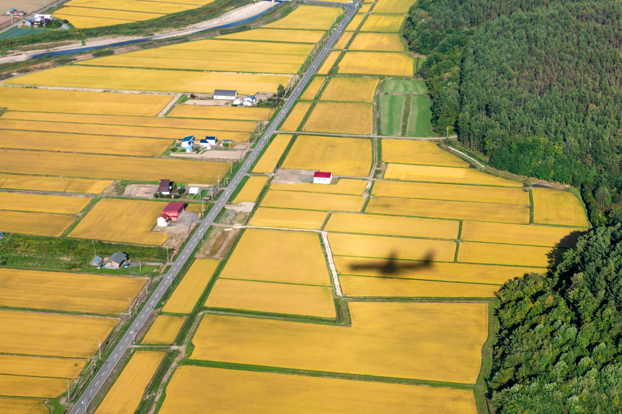 Хоккайдо с воздуха Хоккайдо, несколько, велосипед, следующий, часов, катался, Завтра, через, красиво, очень, центре, территория, используется, выращивают, выглядит, Сверху, покажу, марта, ссылке, подробности